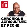 RFI podcast Chronique Agriculture et Pêche avec Sayouba Traoré