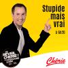 Chérie podcast Stupide mais vrai avec Jean-philippe Doux